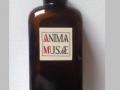 Anima Musae