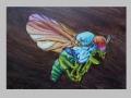 Psychofly